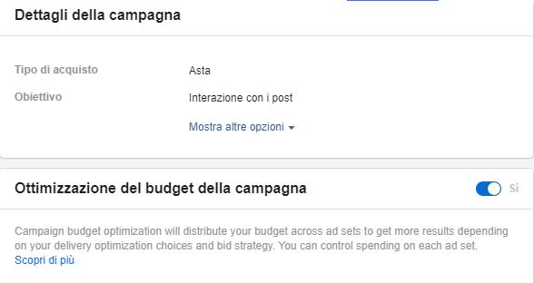 Campaign Budget Optimization Facebook